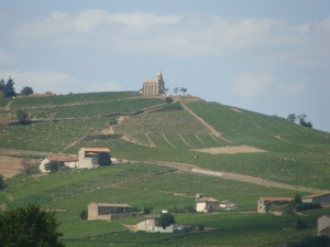 The Hill of Madone